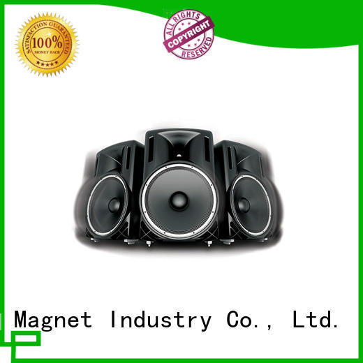 speaker magnetic assembly custom assembly Newland