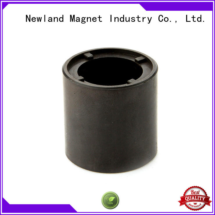 sintered magnet customized for car speakers Newland